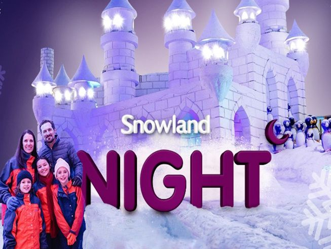 Snowland Night